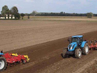 Prepara tu cultivo con nuestros abonos y fertilizantes